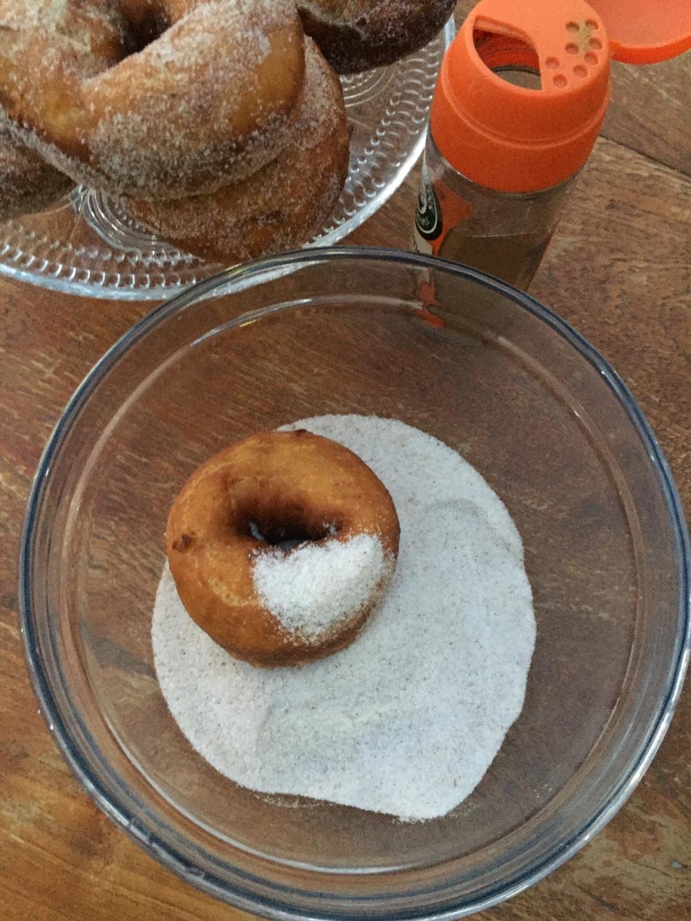 doughnut 8